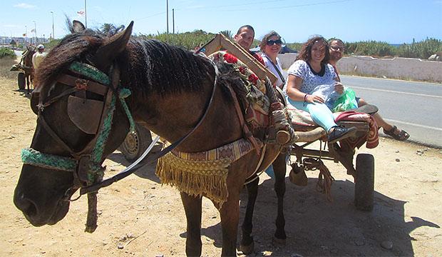 Montar en burro-taxi es una actividad muy divertida que hacer en Asilah
