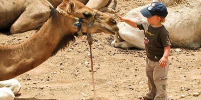Viajar a marruecos con niños