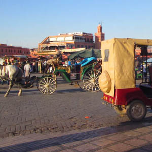 Marrakech a tu gusto