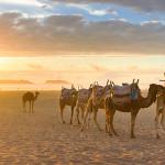 Viaje a Marrakech y Essaouira