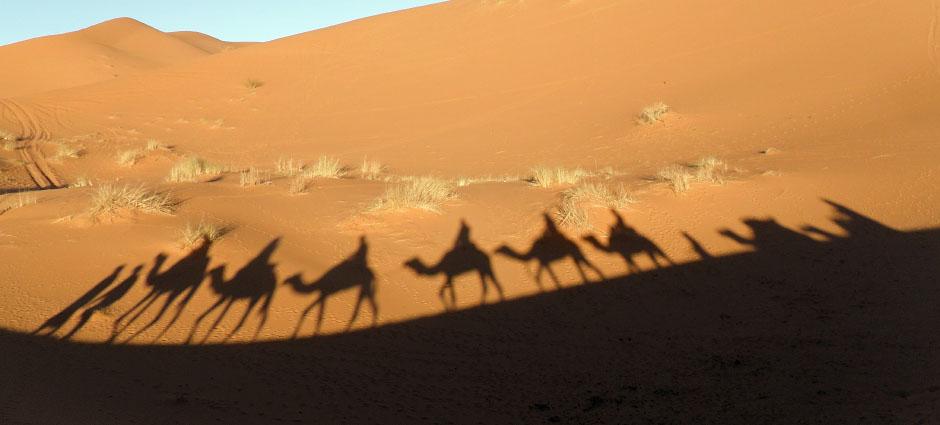 Circuito Sáhara Express (4 días)