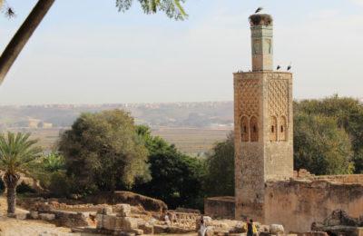 La Necrópolis de Chellah