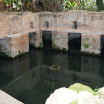 Necrópolis de Chellah. Sala de abluciones/Estanque de anguilas