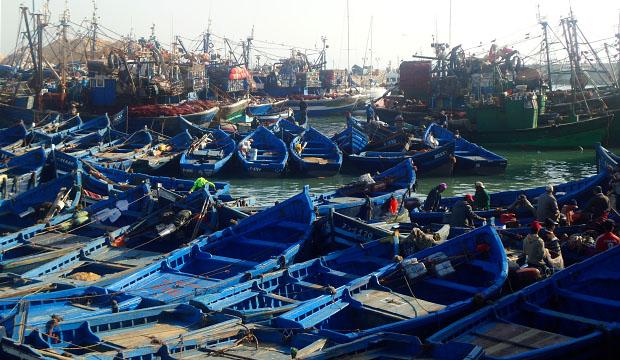 En el puerto se capturan pescados que se venderán en restaurantes en Essaouria