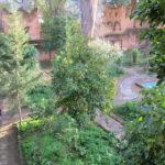 Chefchaouen. Patio de la Alcazaba