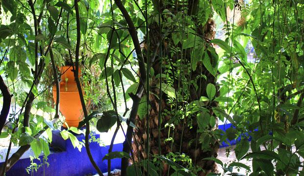 El color bautizado como azul majorelle destaca en estos jardines de Marrakech