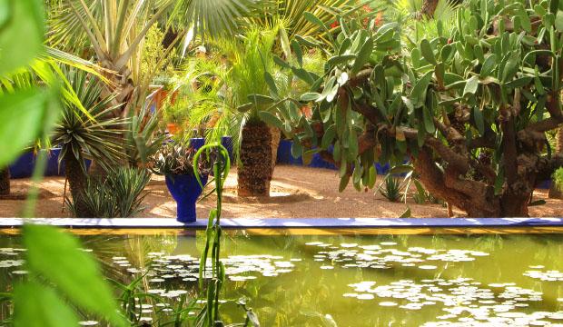 Los Jardines de Majorelle son uno de los mejores jardines en Marrakech, y destacan por su color azul, bautizado como azul majorelle
