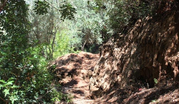 Para llegar hasta donde rompen las Cataratas de Ouzoud se recomienda bajar por el camino rural