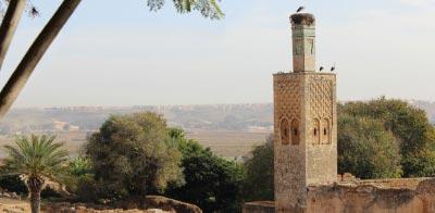 Turismo en Rabat. Necrópolis de Chellah