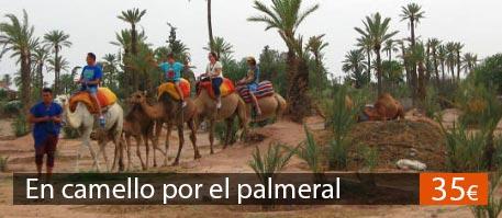 Excursión en camello en Marrakech