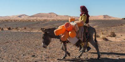 Los tuaregs, también nombrados como touaregs, tuaret o tuare son nómadas bereberes del Sáhara