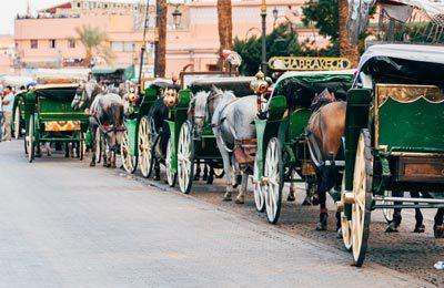 Paseo en calesa por los jardines de Marrakech. Paseo en calesa por Marrakech