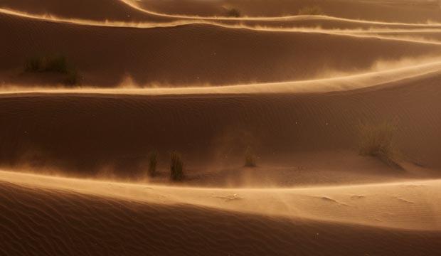 Antes de llegar al desierto de Erg Chegaga (Marruecos) hay dunas con arbustos