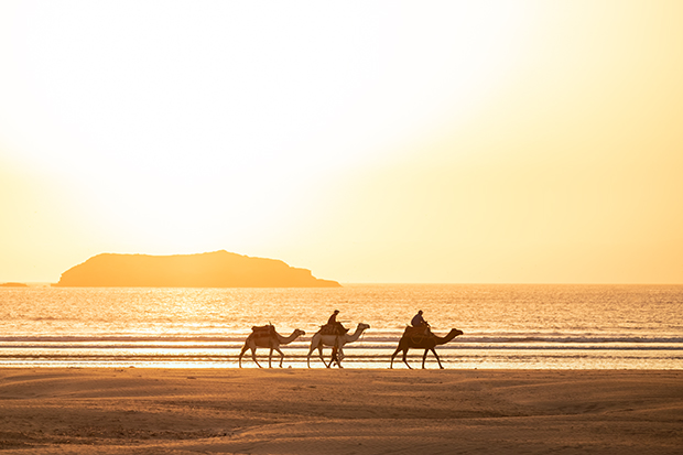 Essaouira Marruecos fotos (playa)