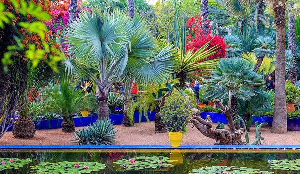 Los jardines Majorelle fueron el lugar escogido por un famoso para una celebración en Marruecos