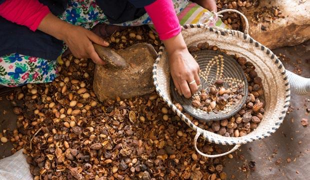 El aceite del argán y su cultura también es patrimonio inmaterial