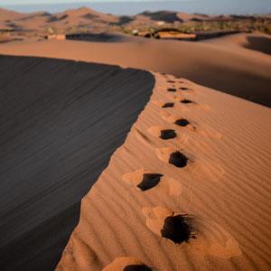 Excursión a Merzouga desde Marrakech