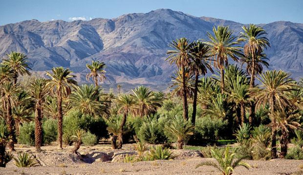 La palabra kasbah en árabe se traduce como parte central de una ciudad o fortaleza