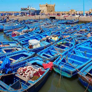 Viaje a Essaouira y Marrakech