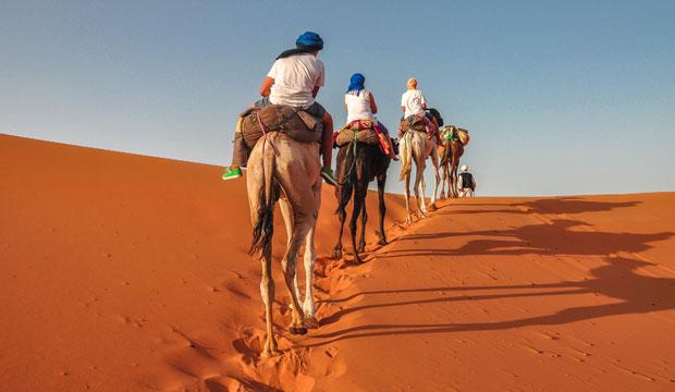 Antes de dormir en una jaima en Marrakech hay que subir en dromedario