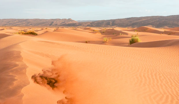 Para dormir en el desierto en Marruecos puedes ir a Erg Chegaga o Erg Chebbi