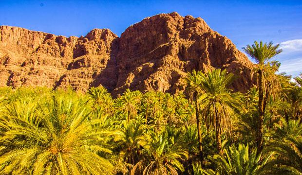 El valle del Todra es uno de los oasis de Marruecos más grandes y frondosos