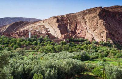 Oasis en Marruecos. Valles en Marruecos