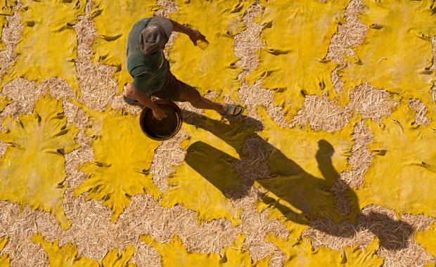 En la curtiduría Chouwara en Fez se ofrecerá una panorámica que se quedará marcada de por vida
