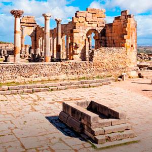 Excursión a Meknes, Volúbilis y Moulay Idriss