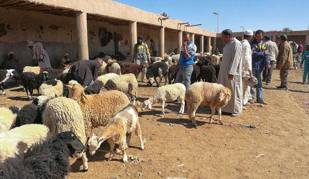El zoco de Rissani es un zoco de Marruecos al más puro estilo tradicional